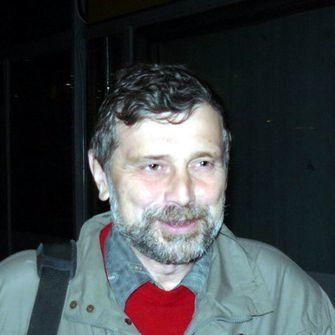 Автор Александр Николаевич Громов