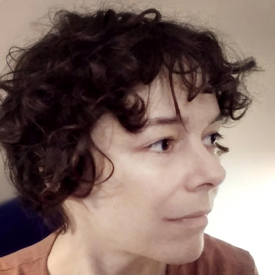 Автор Карина Шаинян
